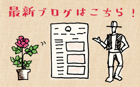 <em>ときどき更新中!</em>篠宮バラ園の最新情報、農作業の様子、バラの育て方など盛りだくさん。ぜひご覧ください♪(最新記事10/16公開)<b>ブログ</b>