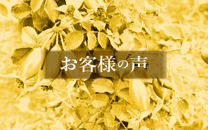 <em>なぜ篠宮バラ園で購入されましたか?</em>ご注文いただいたお客様にお伺いしました。<b>特集</b>
