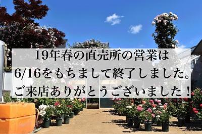 <em>ご来店ありがとうございました!</em>東京東久留米市の直売所の営業は今季は終了いたしました。<br>次回は、2020年春です。</em><b>お知らせ</b>