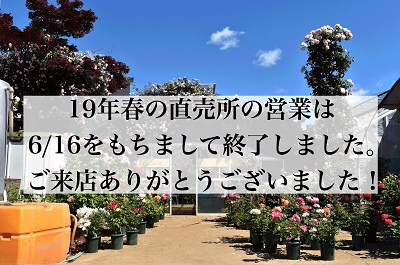 <em>ご来店ありがとうございました!</em>東京東久留米市の直売所の営業は今季は終了いたしました。<br>次回は、2020年春にお待ちしております!</em><b>お知らせ</b>