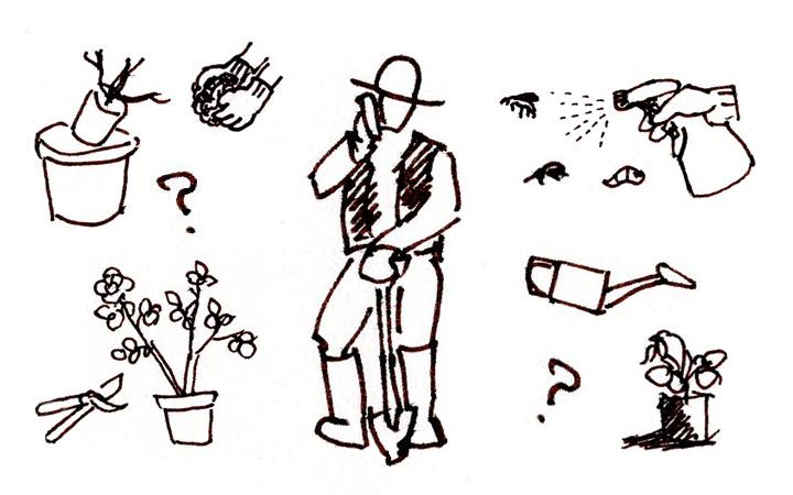 <em>園主による電話相談、承ります。</em>バラを育てていての疑問、お悩みに、50年近くバラを育て、ともに生きてきた経験から、 皆様に少しでもお役に立てますよう、アドバイスさせていただきます。<b>お知らせ</b>