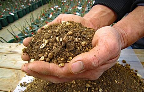 <em>\冬の植替えに/ オリジナル培養土「Rose Soil」</em>40年のノウハウを凝縮。高品質な赤土を配合し、真夏の酷暑でも生育によどみの少ない培養土に仕上げております。<b>お買いもの</b>