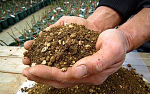 <em>オリジナル培養土18L「Rose Soil」</em>良質な赤玉土、赤土を主原料とし、水はけと水持ちという相反する条件を高次元でバランスさせるため、40年のノウハウを凝縮しております。<b>お買いもの</b>